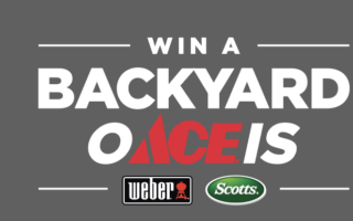 O ACE IS Backyard